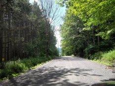 Bachar Road